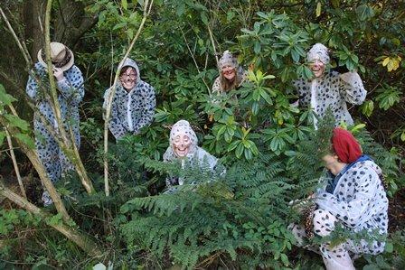 The Cheesy Cheetahs blending into their natural habitat