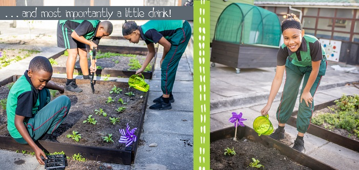 Growing Vegetables for the First Time: The SOS Africa Children's New Charity Gardening Projects