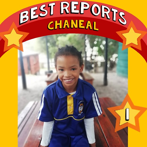 SOS Africa St Michael's Elgin: Best School Report