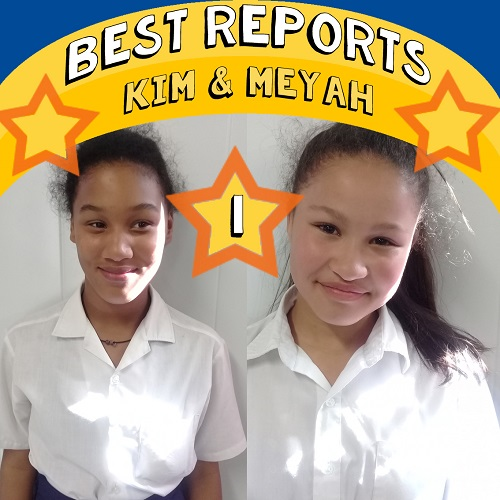 SOS Africa Somerset West: Best School Reports