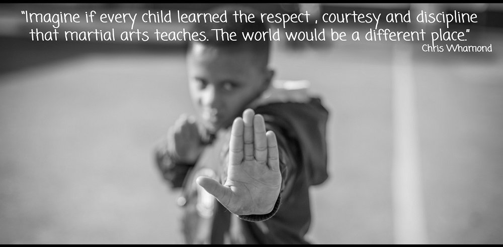 Martial Arts Lessons teach children self-respect and self-discipline